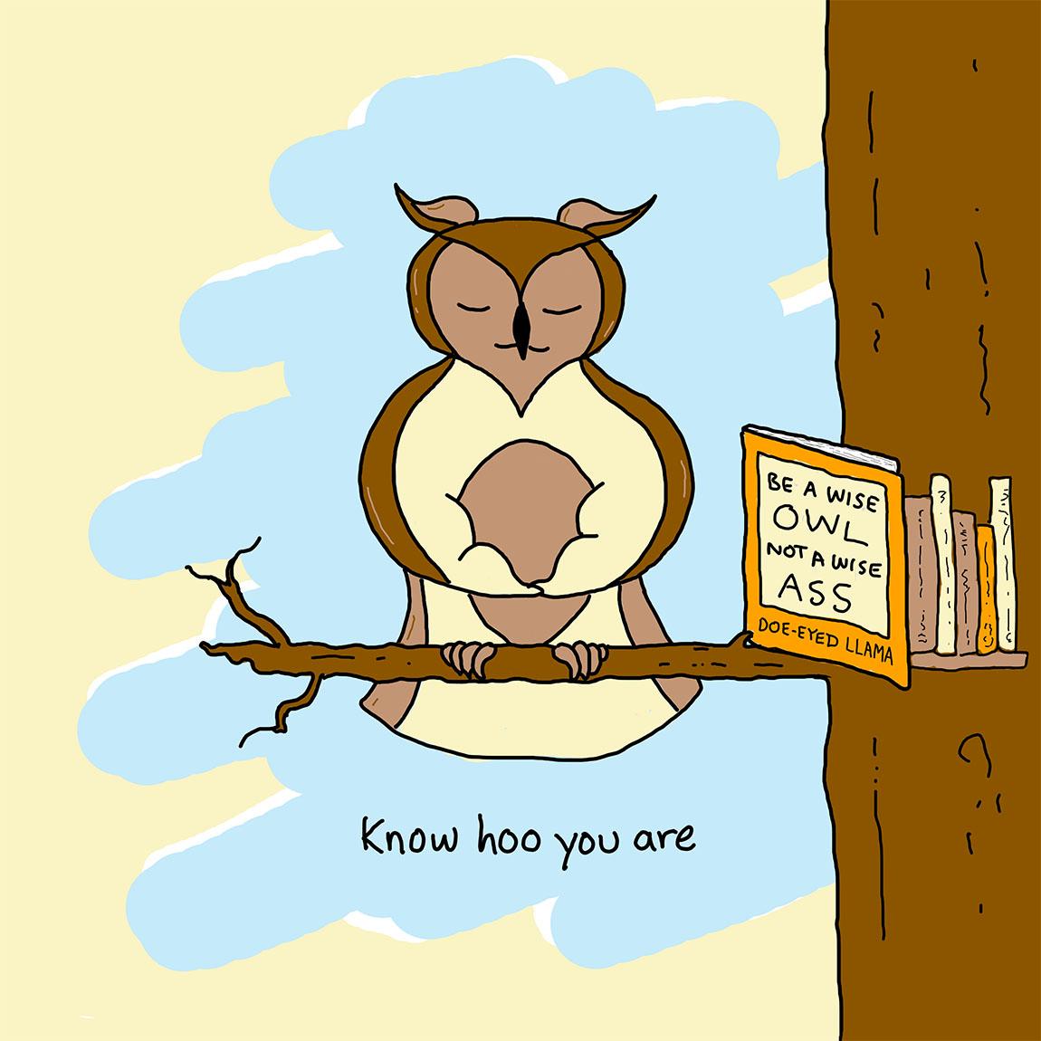 mooncube Artist, Cartoonist. Wise owl meditating.